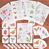 Pollination Pack: 3-part flash cards, classroom posters, &