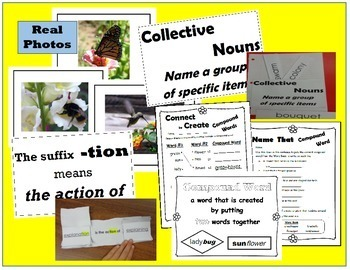 NGSS Pollination ELA Activities: Plants Depend on Animals, Science Materials