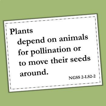 Pollination Vocabulary Quiz:Plants Depend on Animals, Next Generation Science