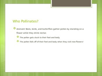 Pollination Powerpoint
