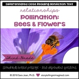 Pollination Reading Comprehension Passage & Questions Nonfiction Text