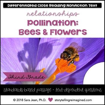 Pollination Reading Comprehension Passage & Questions Nonfiction Text