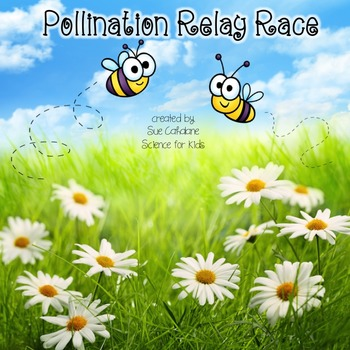Pollination Relay Race {NGSS aligned 2-LS2-2} {science}