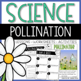 Plants, Pollination, and Parts of a Flower Worksheets and Interactive Notebook