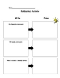 Pollination Worksheet