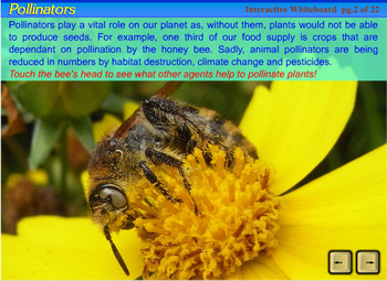 Pollination, Fertilization & Seed Dispersal - an Interactive SmartBoard lesson