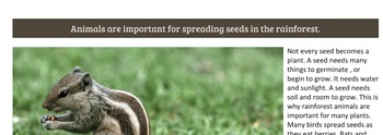 Pollination and How Seeds Spread PDF