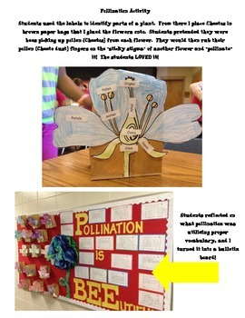 Pollination and Parts of a Flower Activity