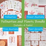 Pollination and Plants Bundle