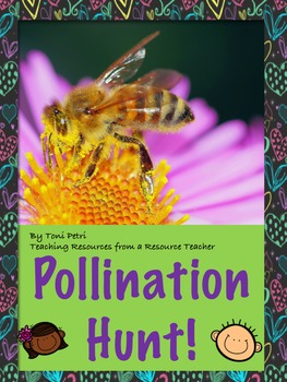 Pollination game--hunt! (NGSS aligned)