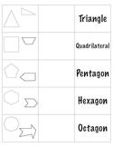 Polygon StudyFold