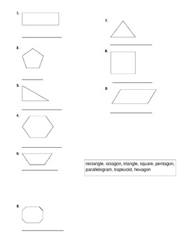 Polygon Worksheet