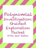 Polynomial Investigation - Algebra