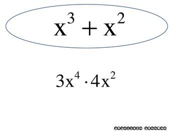 Polynomials Scavenger Hunt Bundle - PP