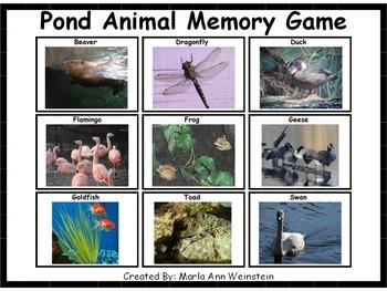 Pond Animal Memory Game