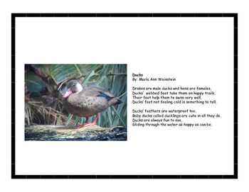 Pond Animal Poetry Pack