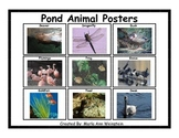 Pond Animal Posters