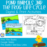 Pond Animals - Frog Life Cycle | Digital and Print Activities
