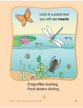 Pond Animals: Circle-Time Book