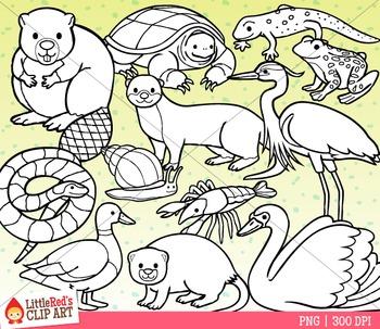 Pond Wetland Animals Clipart