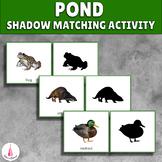 Pond Animals Visual Discrimination Activity (shadow matching)