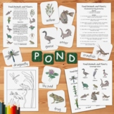 Pond Animals and Plants Pack: An ecology activity pack for kids
