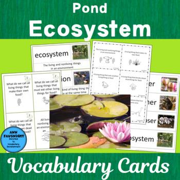 Pond Ecosystem Vocabulary
