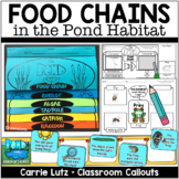 Pond Food Chain Activities