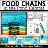 Pond Food Chain Activities