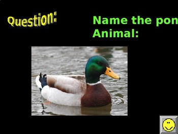 Pond Habitat Jeopardy Game