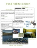 Pond Habitat Lesson and Power Point