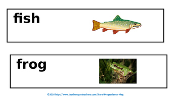 Pond Habitat Science Word Wall Cards