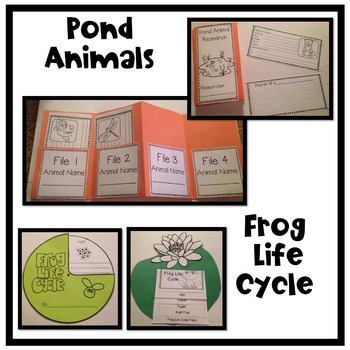 Pond Habitat Unit with Life Cycle of a Frog