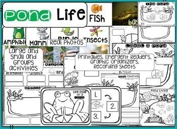 Pond Life