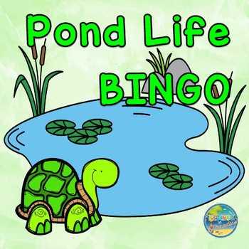 Pond Life BINGO and More!