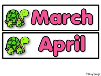 Pond Life Calendar Set