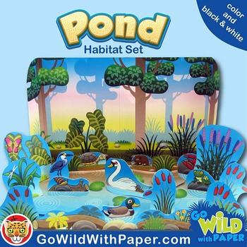 Pond Life Diorama Project   Fresh Water Animal Habitat Craft