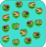 Pond Life Frog Attendance