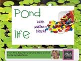 Pond Life Pattern Block Cards STEAM