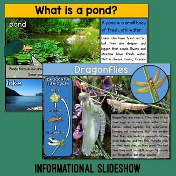 Pond Habitat Unit with PowerPoint