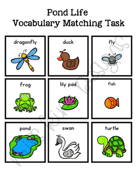 Pond Life Vocabulary Folder Game for Early Childhood Special Education
