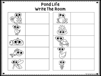 Pond Life Write The Room