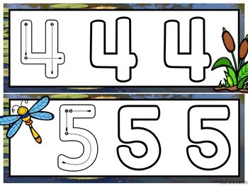 Pond Life Write and Wipe Number Cards Freebie