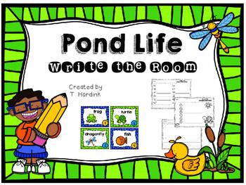 Pond Life - Write the Room