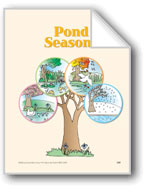 Pond Seasons: Circle-Time Book