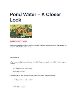 Pond Water: Seeing the Invisible With a Microscope