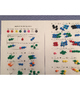Pop Bead Chemical Equations