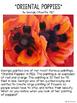 Poppy Art Project
