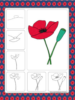 Poppy Directed Drawing Remembrance Day November