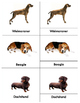 Popular Dogs: Three Part Cards